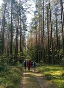 Palydėjome vasarą ir pasitikome rudenį Šakarvos miške