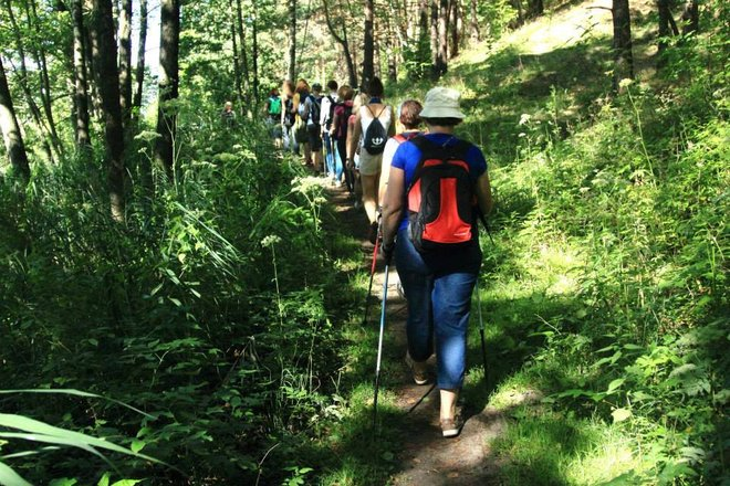 Nordic walking training and hiking organization