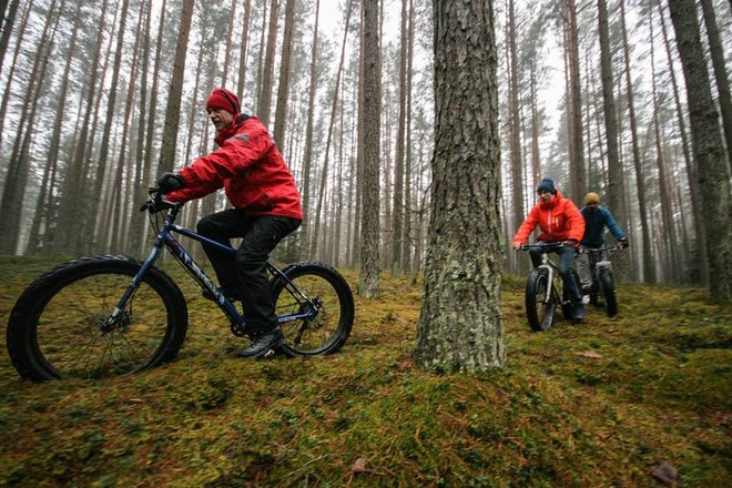 LitWild - Activity holidays in Lithuanian nature