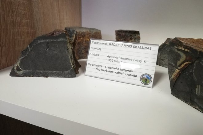 """Geologists Travel Exposition """"Rocks - Earth History Yearbook"""""""