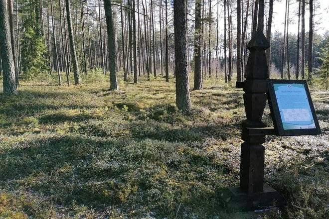 Didžiasalis burial ground II, command. Kuronai, the graves of Napoleon
