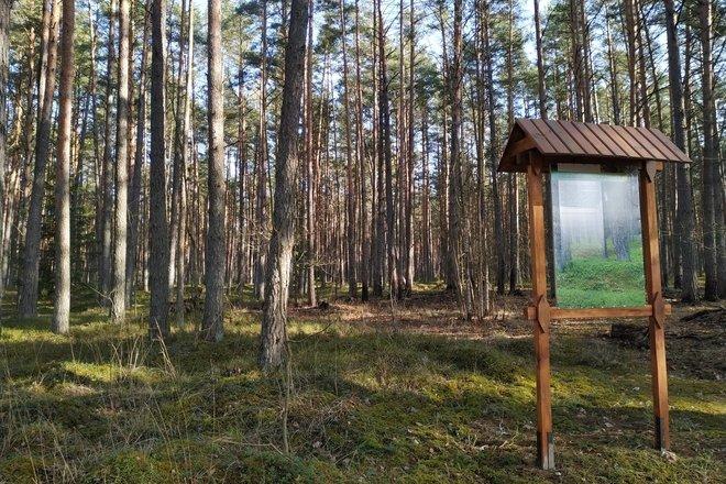 Gedžiūnėliai (Garšvinė) burial ground