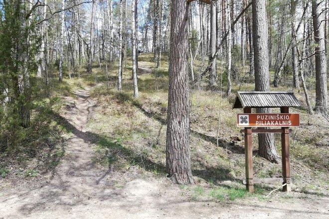 Puziniškis mound