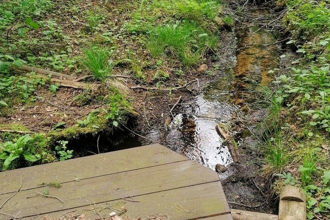 Almajo Water spring