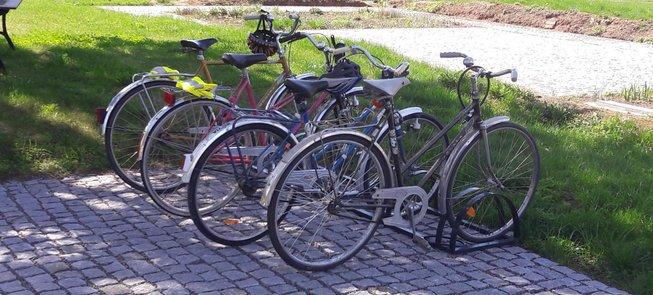 Bike rental in Palaisius Manor