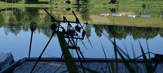 Recreational carp fishing in Skudutis lake